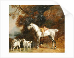 Huntsman with a Grey Hunter and Two Foxhounds by George Stubbs
