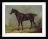 Golding Constable's Black Riding-Horse by John Constable