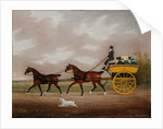 A Gentleman driving Tandem to a Jaunting Car by Edwin W. Cooper
