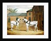 Mr. Sowerby's Grey Carriage Horses in his Coachyard at Putteridge Bury, Hertfordshire by John Frederick Herring Snr