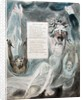 Ode to Adversity by William Blake