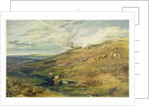 Dartmoor: The Source of the Tamar and the Torridge by Joseph Mallord William Turner