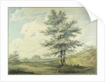 Landscape with Trees and Figures by Joseph Mallord William Turner
