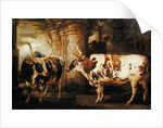 Portraits of two extraordinary oxen, the property of the Earl of Powis by James Ward
