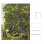 A Wooded Landscape by Ramsay Richard Reinagle