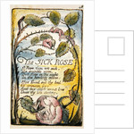 The Sick Rose by William Blake