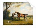 The Earl of Shrewsbury's Groom Holding a Hunter by Henry Bernard Chalon