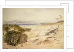 The Dead Sea, 1858 by Edward Lear