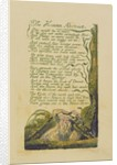 The Human Abstract by William Blake