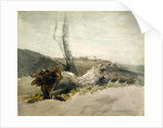 The Fallen Tree by Robert Hills