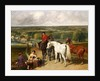 Exercising the royal horses by John Frederick Herring Snr