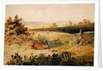 Hare in a Landscape by Newton Fielding