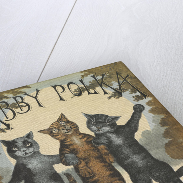 Tabby Polka by Anonymous