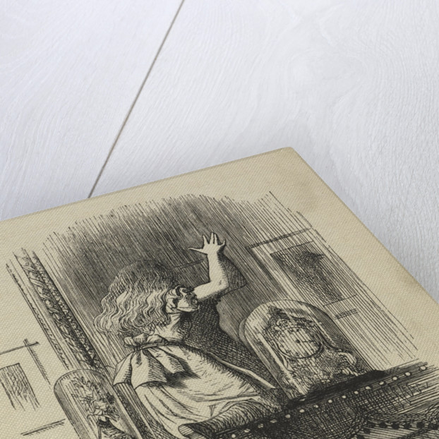 Through the looking-glass, and what Alice found there by John Tenniel