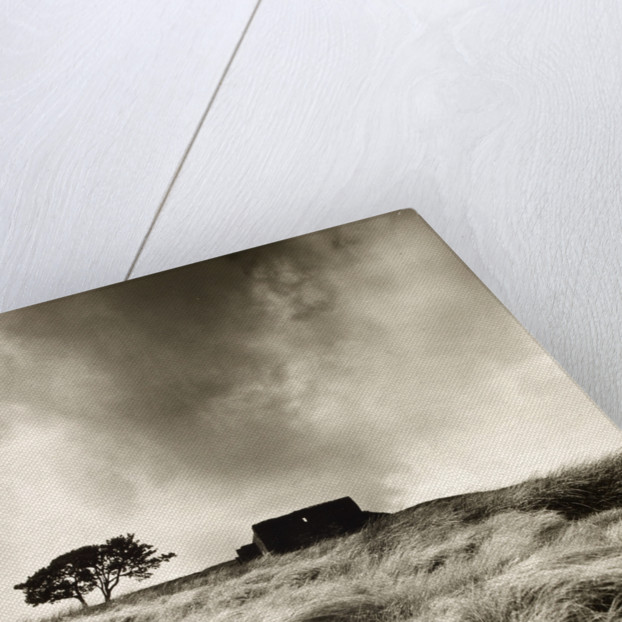 Top Withens by Fay Godwin