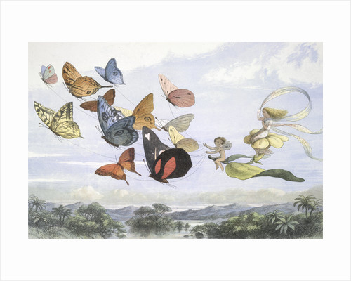 The Fairy Queen by Richard Doyle