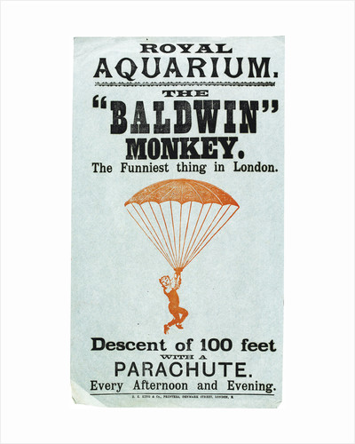 The Baldwin Monkey by Anonymous