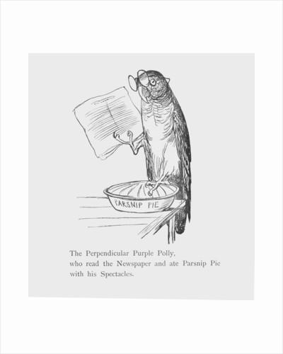Purple parrot by Edward Lear