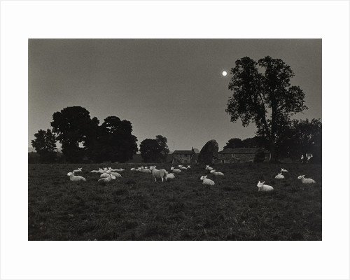 Moonlight by Fay Godwin