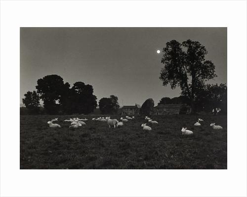 Moonlight by Fay Godwin