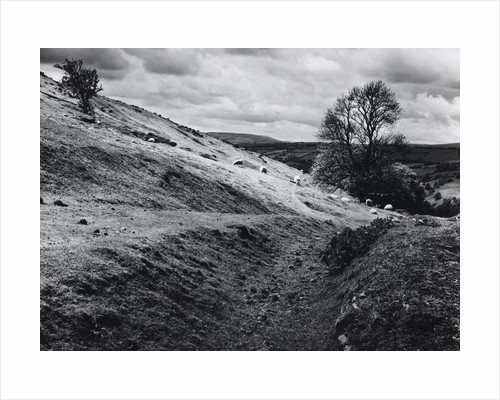 Aberedw Hill by Fay Godwin