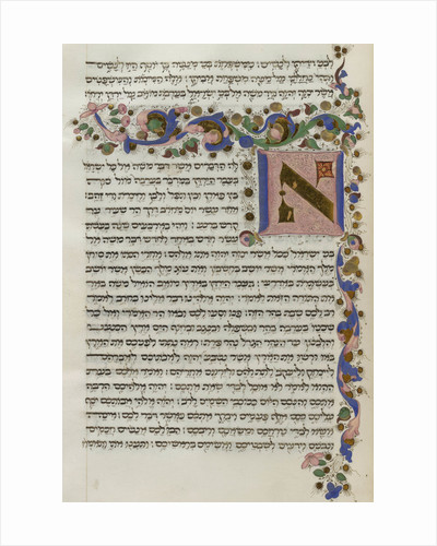 Duke of Sussex's Italian Pentateuch by Anonymous