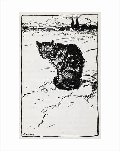 A cat by Arthur Rackham