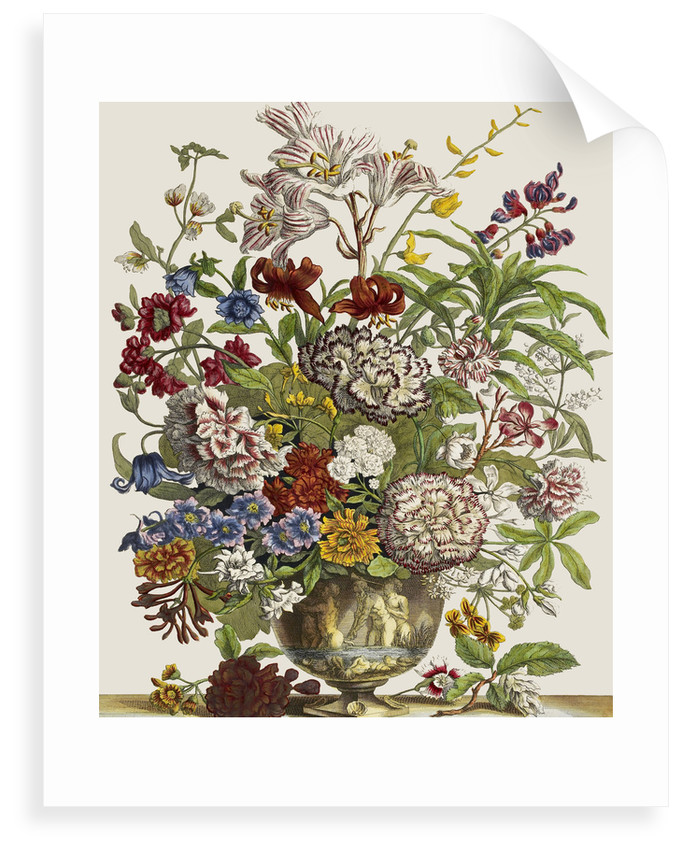 Flowers In A Vase Posters Prints By Pieter Casteels
