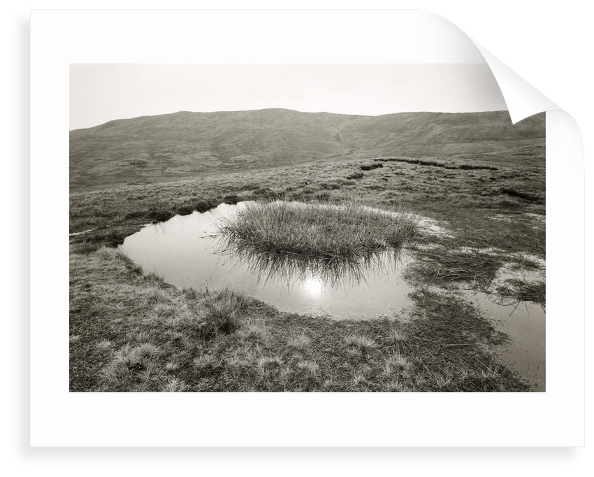 Reflected sun by Fay Godwin