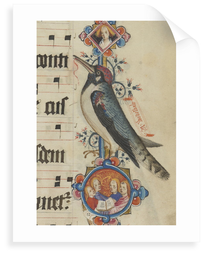 Woodpecker detail from the Sherborne Missal by John Siferwas