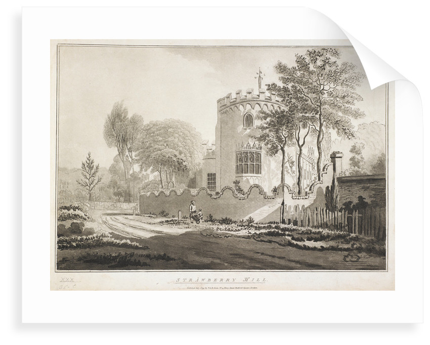 Strawberry HIll by Anonymous