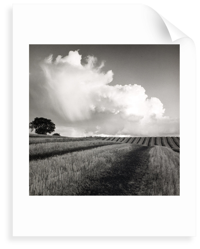 Large White Cloud near Bilsington by Fay Godwin