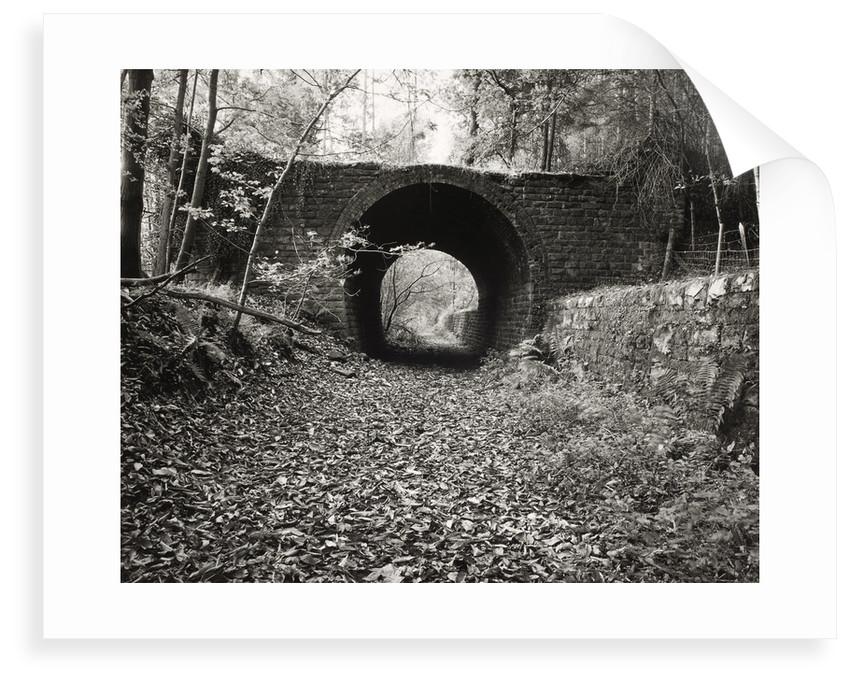 One Way Bridge by Fay Godwin
