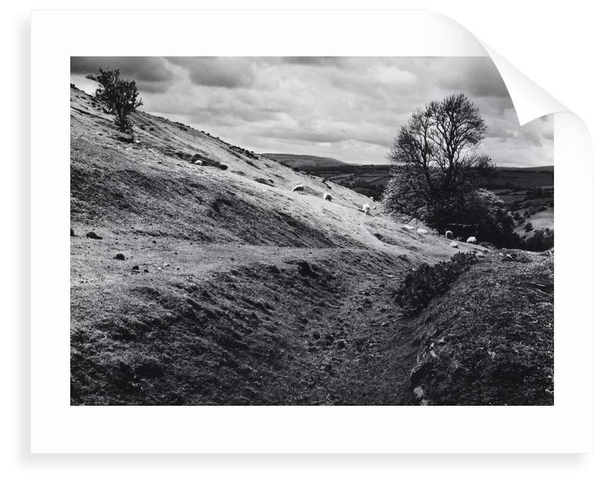 Aberedw Hill by Fay Godwin