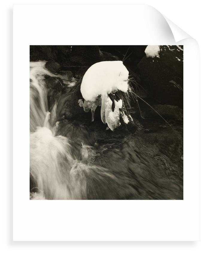 Blake Dean by Fay Godwin