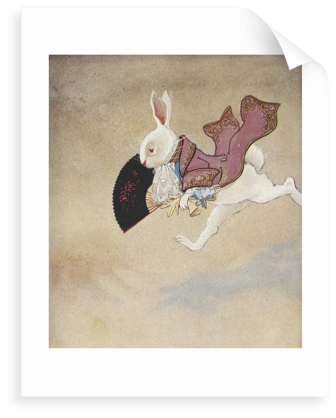 White Rabbit by Gwynedd M Hudson