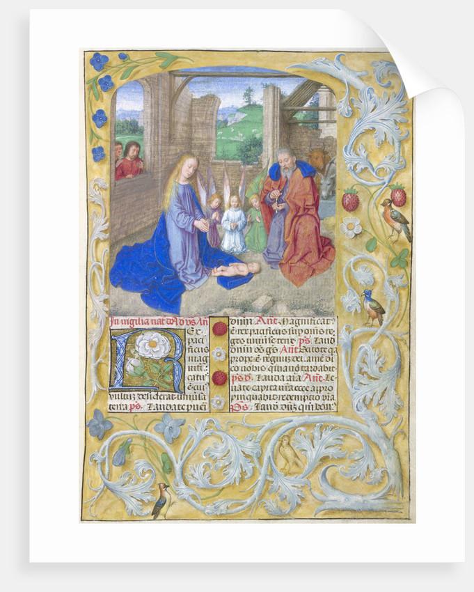 The Nativity by Gerard David