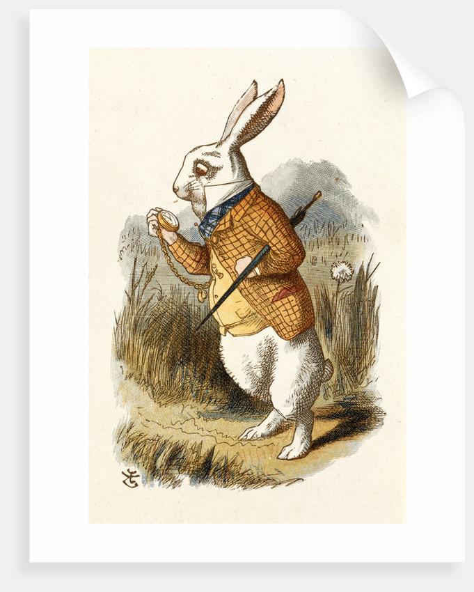 The White Rabbit by John Tenniel