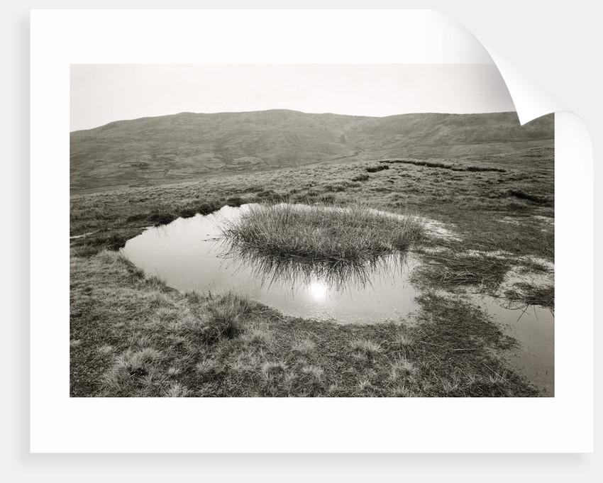 Reflected sun by Fay Godwin
