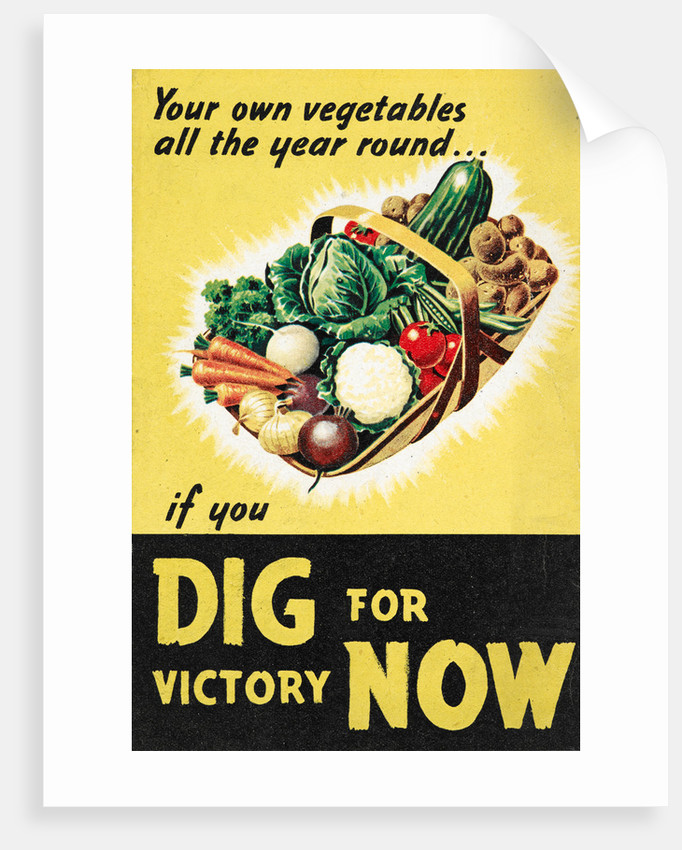 Dig for Victory Now by Anonymous
