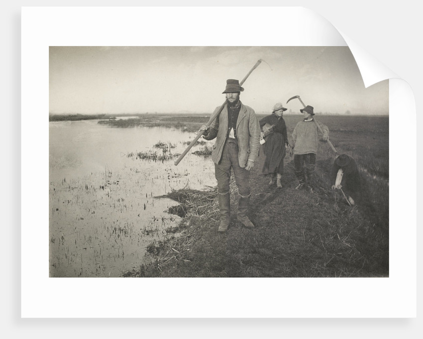 Coming home from the marshes, c. 1886 by Peter Henry Emerson