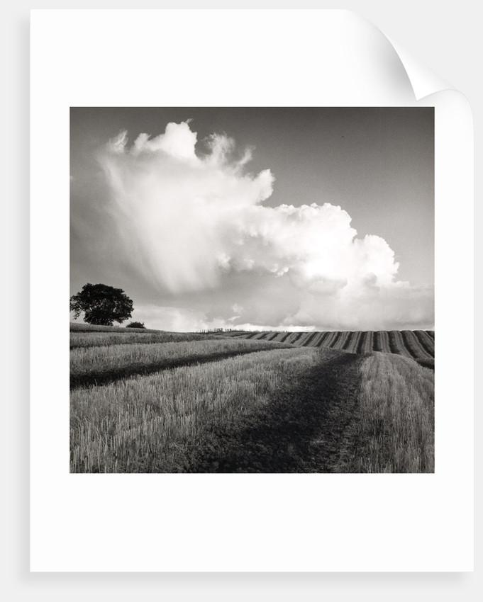 Large White Cloud near Bilsington by Fay Godwin