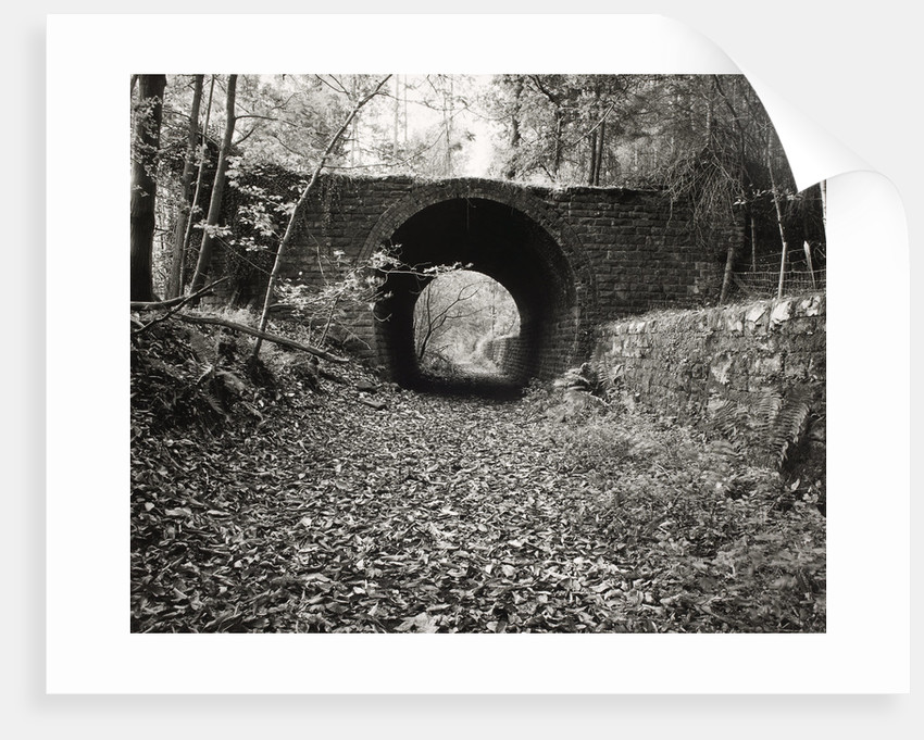 One Way Bridge by Fay Godwin