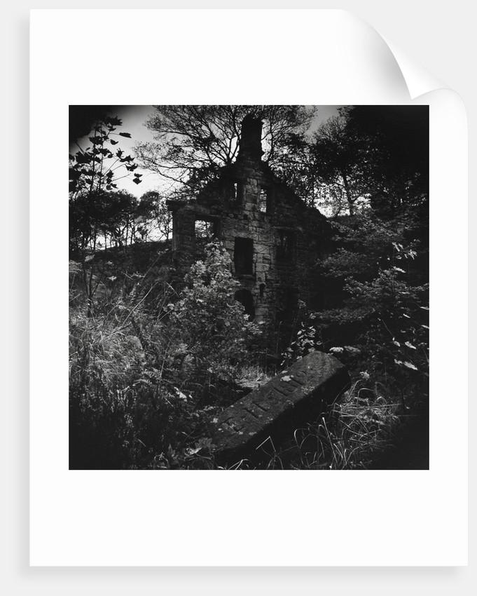 Staups Mill by Fay Godwin