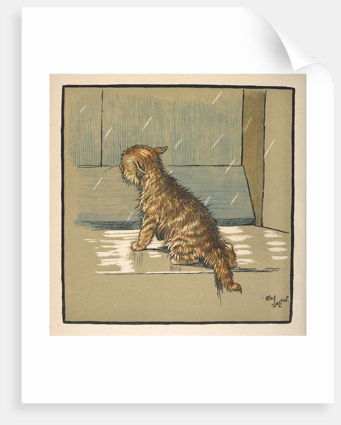 Kitten out in the rain by Cecil Aldin