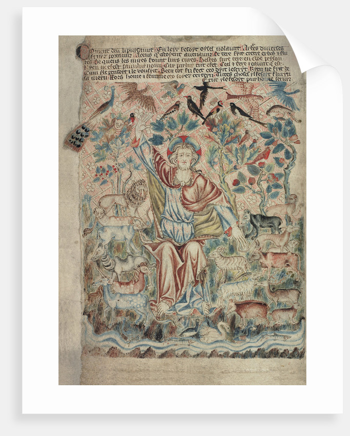 God the Creator with birds and beasts by Anonymous