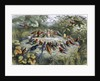 An elf conducts an orchestra of birds by Richard Doyle