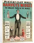Harvey's midges by Anonymous