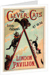 The Clever Cats by Anonymous