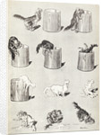 Sketches of cats by Theophile-Alexandre Steinlein